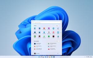 Windows 11 screen grab